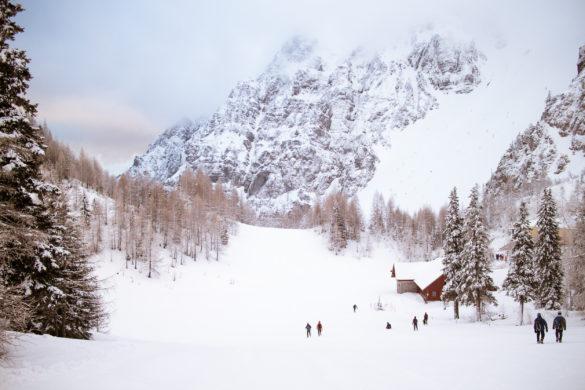 Zimski tabor na Zelenici