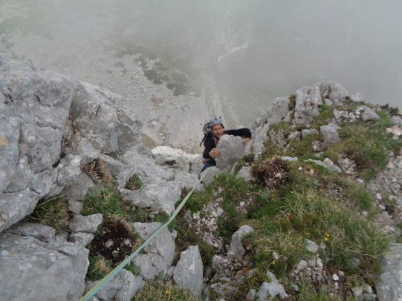 Češnovar-Srakar v Koglu
