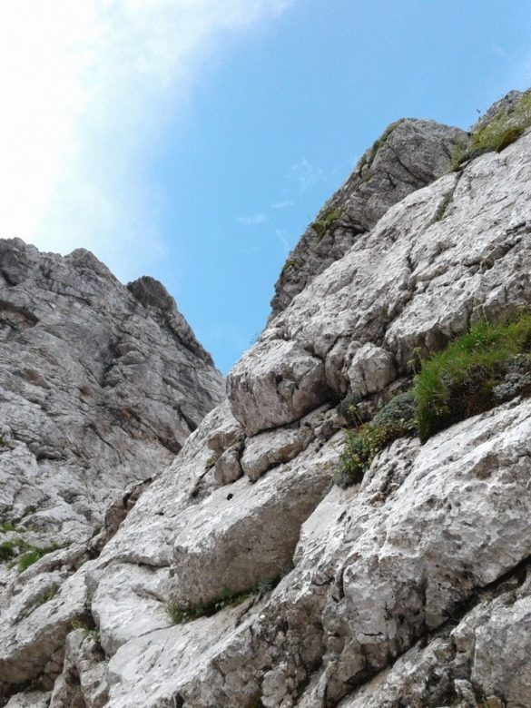 Grintovčev steber